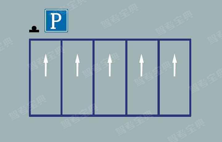 这种停车标线含义是什么?