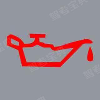 发动机起动后仪表板上(如图所示)亮表示什么?